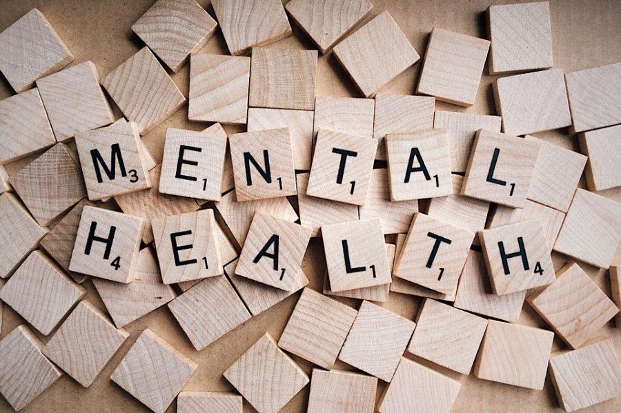 Mental Health Team Expands